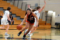 Girls Hoops-Franklin Regional vs Latrobe_20210201-KR1_6023